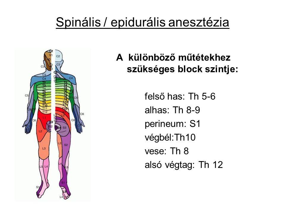 Spinális / epidurális anesztézia A különböző műtétekhez szükséges block szintje: felső has: Th 5-6 alhas: Th 8-9 perineum: S1 végbél:Th10 vese: Th 8 a