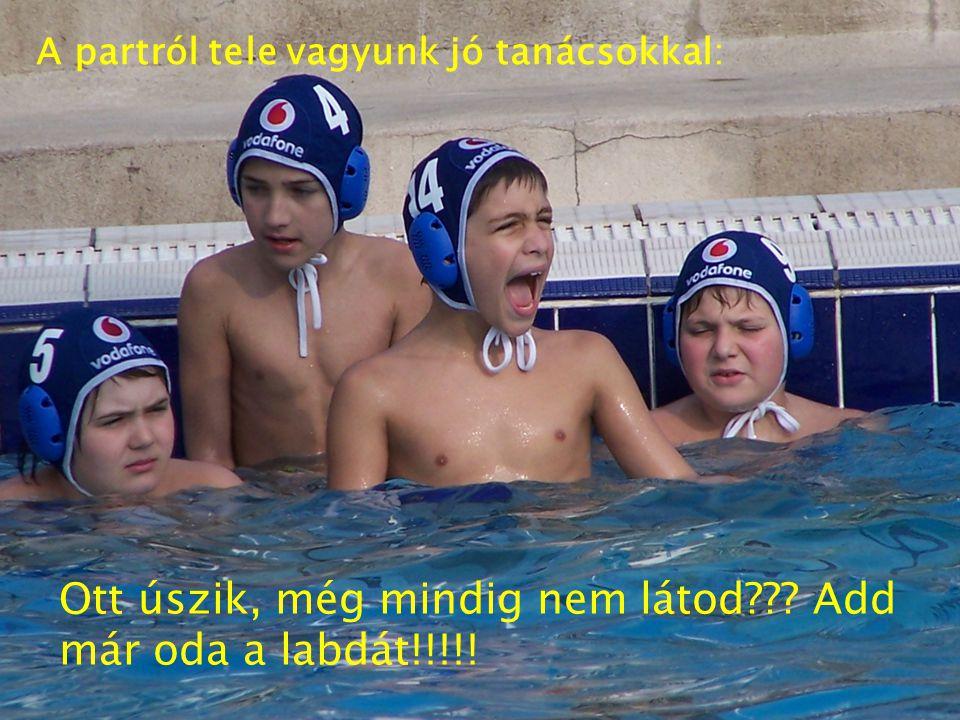 Ott úszik, még mindig nem látod??? Add már oda a labdát!!!!! A partról tele vagyunk jó tanácsokkal: