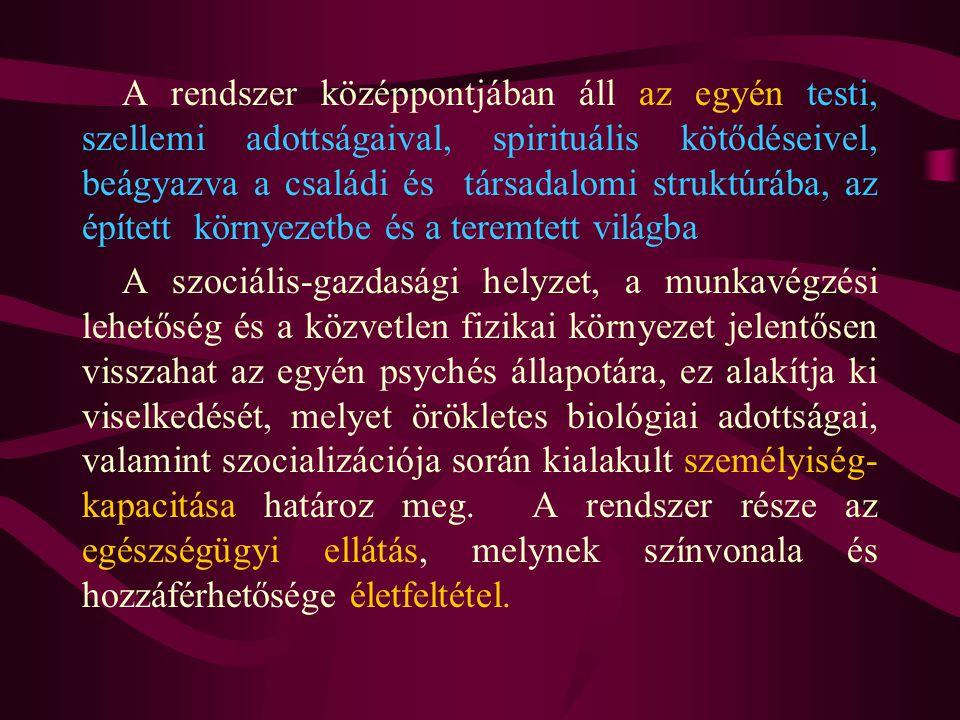 A rendszer középpontjában áll az egyén testi, szellemi adottságaival, spirituális kötődéseivel, beágyazva a családi és társadalomi struktúrába, az épí