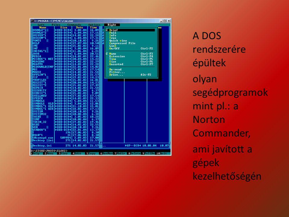 Ahogy a technika fejlődött úgy jöttek létre az akkori korhoz képest fejlett operációs rendszerek amik elősegítették a számítógép használatának könnyítését ilyen volt a Windows 95 ami nem volt elég stabil, de rengeteget segített a számítógépek kihasználtságában.