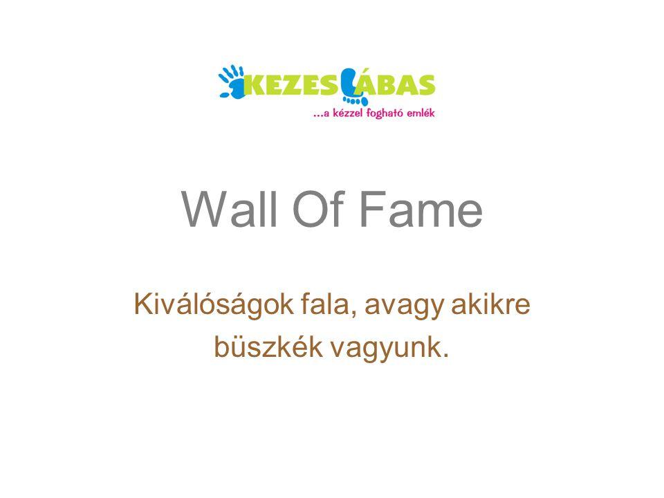 Wall Of Fame Kiválóságok fala, avagy akikre büszkék vagyunk.