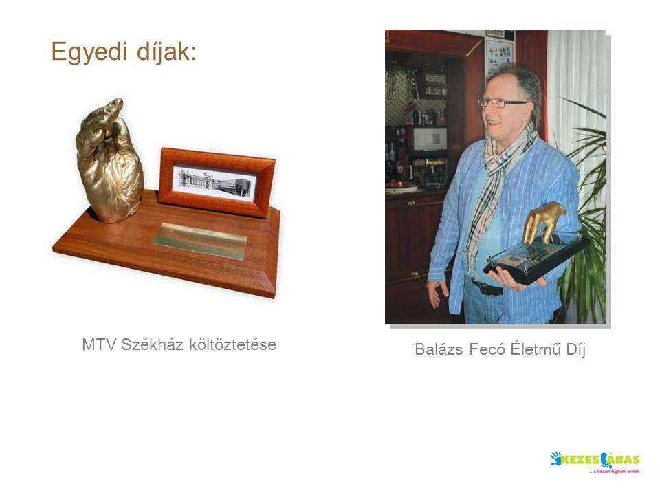Egyedi díjak: MTV Székház költöztetése Balázs Fecó Életmű Díj