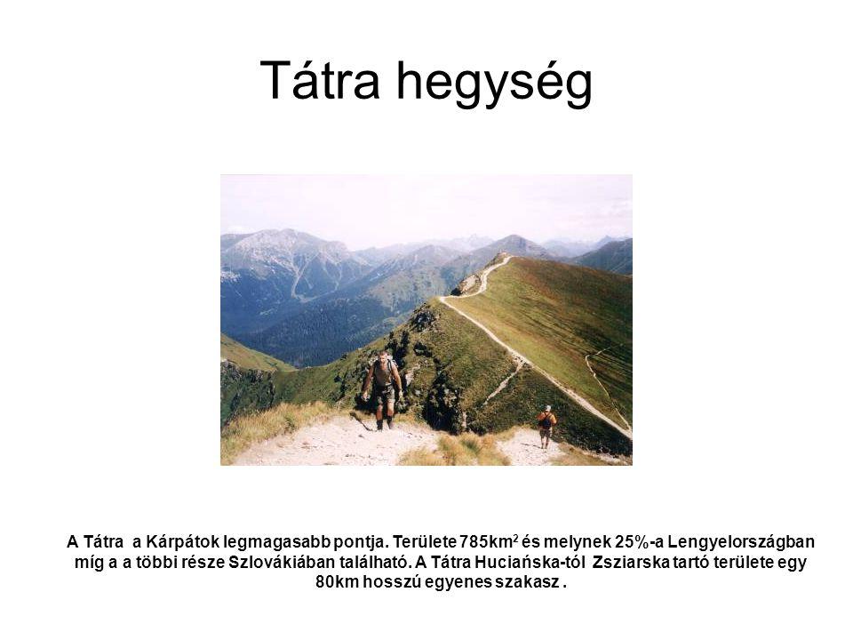 Tátra hegység A Tátra a Kárpátok legmagasabb pontja. Területe 785km 2 és melynek 25%-a Lengyelországban míg a a többi része Szlovákiában található. A