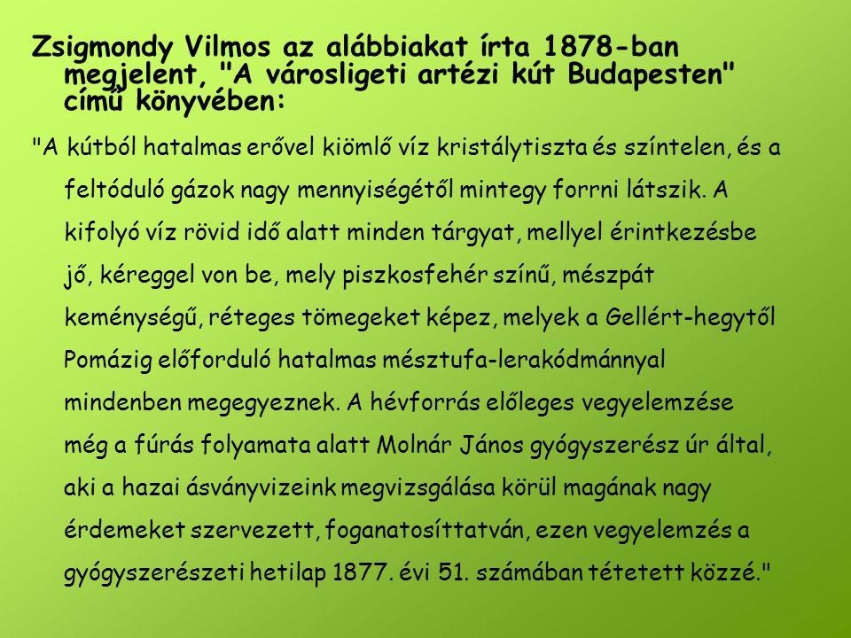 Zsigmondy Vilmos az alábbiakat írta 1878-ban megjelent,