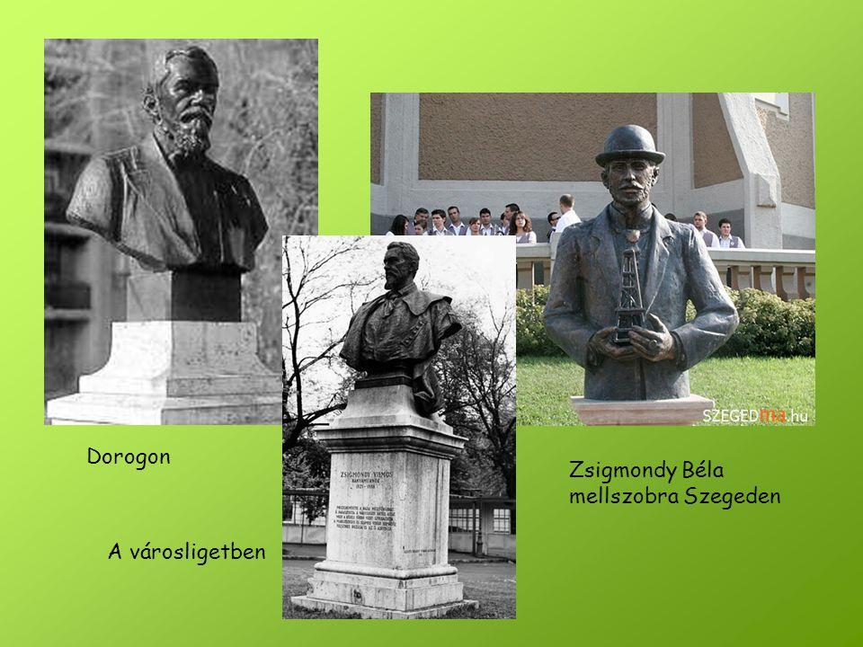 Dorogon Zsigmondy Béla mellszobra Szegeden A városligetben