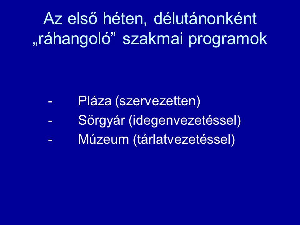 """Az első héten, délutánonként """"ráhangoló szakmai programok -Pláza (szervezetten) -Sörgyár (idegenvezetéssel) -Múzeum (tárlatvezetéssel)"""