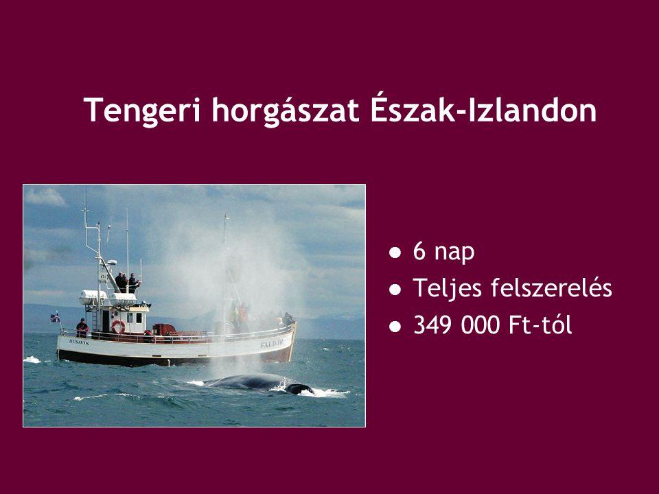 Tengeri horgászat Észak-Izlandon 6 nap Teljes felszerelés 349 000 Ft-tól