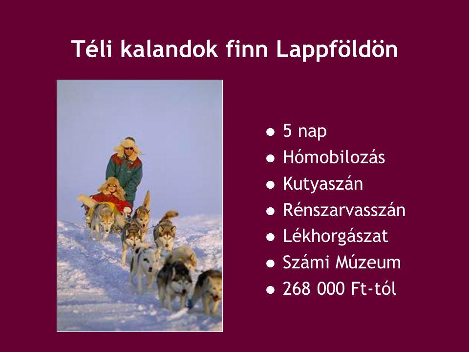 Jég és tűz terepjárótúra (Izland) 5 nap Thorsmork-völgy Myrdalsjokull-gleccser Vatnajökull Hekla Gullfoss-vízesés Gejzír 329 000 Ft-tól