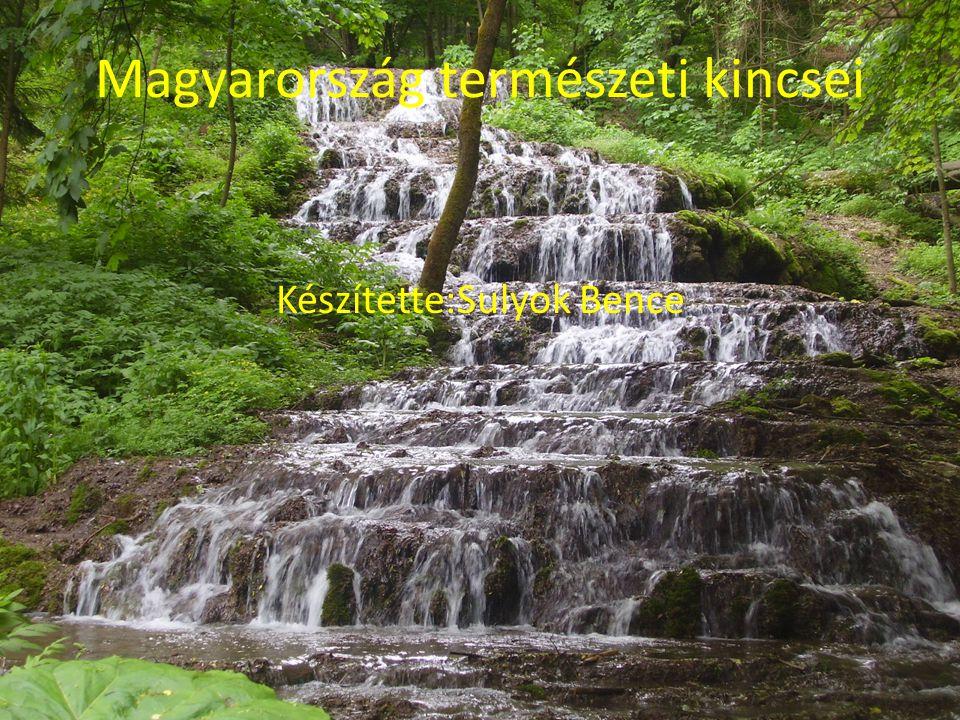Magyarország természeti kincsei Készítette:Sulyok Bence