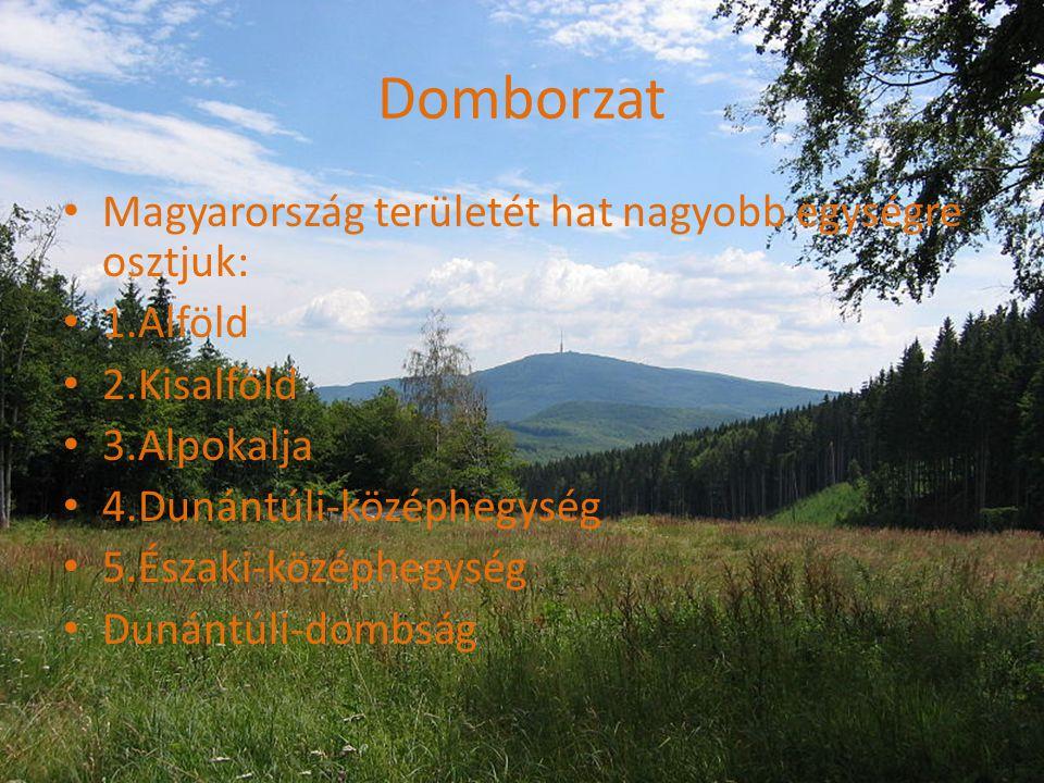 Domborzat Magyarország területét hat nagyobb egységre osztjuk: 1.Alföld 2.Kisalföld 3.Alpokalja 4.Dunántúli-középhegység 5.Északi-középhegység Dunántúli-dombság