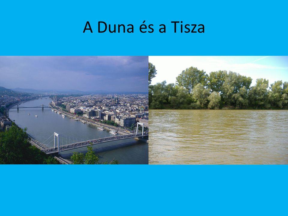 Tavak Magyarország és Közép-Európa legnagyobb tava a Balaton, amelynek a felülete 594 km².
