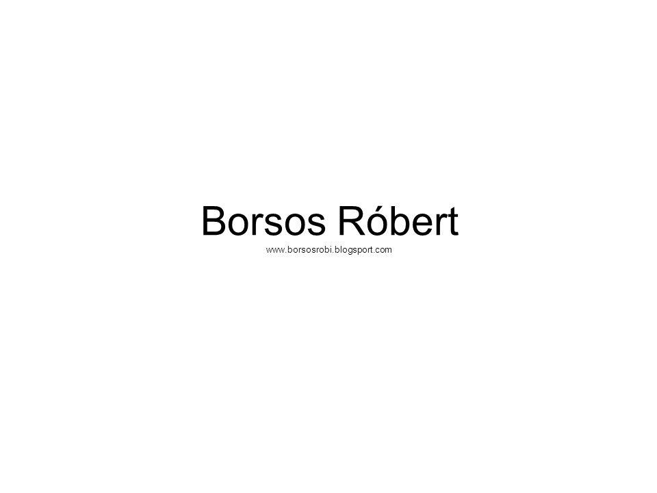 Borsos Róbert www.borsosrobi.blogsport.com