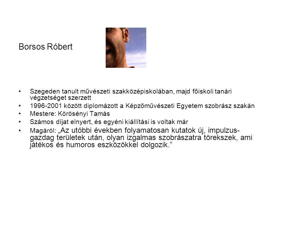 Borsos Róbert Szegeden tanult művészeti szakközépiskolában, majd főiskoli tanári végzetséget szerzett 1996-2001 között diplomázott a Képzőművészeti Eg