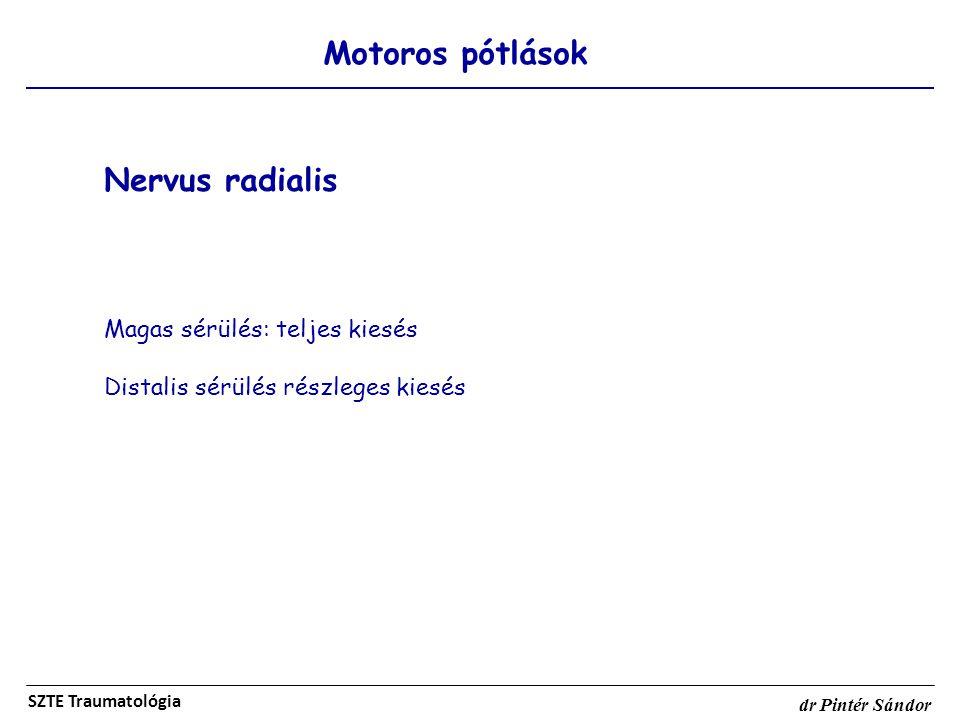 Motoros pótlások SZTE Traumatológia dr Pintér Sándor Nervus radialis Magas sérülés: teljes kiesés Distalis sérülés részleges kiesés