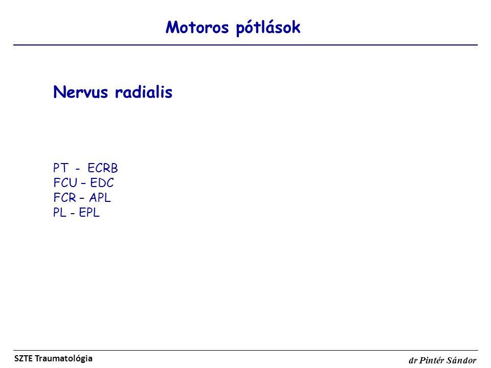 Motoros pótlások SZTE Traumatológia dr Pintér Sándor Nervus radialis PT - ECRB FCU – EDC FCR – APL PL - EPL