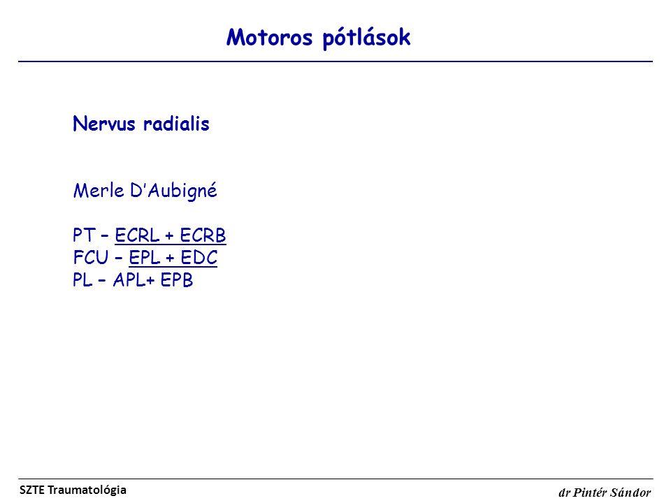 Motoros pótlások SZTE Traumatológia dr Pintér Sándor Nervus radialis Merle D'Aubigné PT – ECRL + ECRB FCU – EPL + EDC PL – APL+ EPB