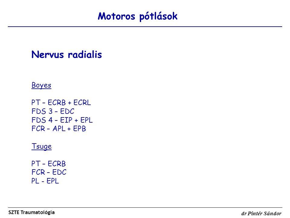 Motoros pótlások SZTE Traumatológia dr Pintér Sándor Nervus radialis Boyes PT – ECRB + ECRL FDS 3 – EDC FDS 4 – EIP + EPL FCR – APL + EPB Tsuge PT – E