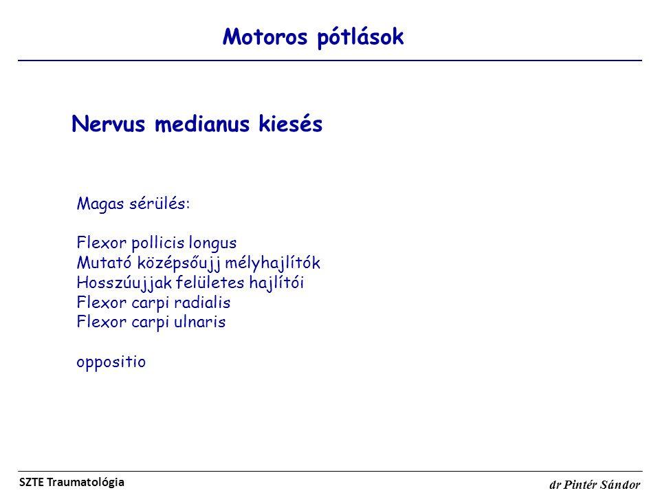 Motoros pótlások SZTE Traumatológia dr Pintér Sándor Nervus medianus kiesés Magas sérülés: Flexor pollicis longus Mutató középsőujj mélyhajlítók Hossz