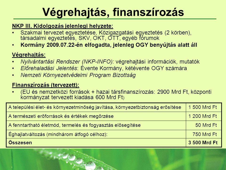 Végrehajtás, finanszírozás NKP III.