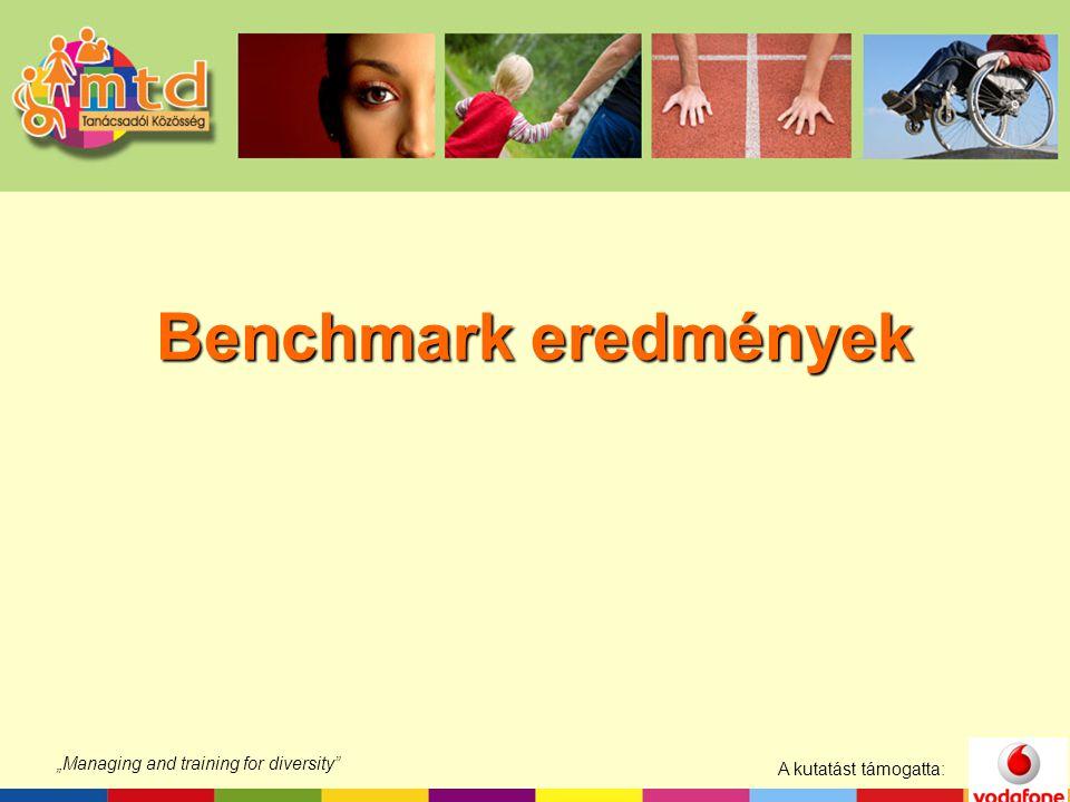 """A kutatást támogatta: """"Managing and training for diversity Benchmark eredmények"""