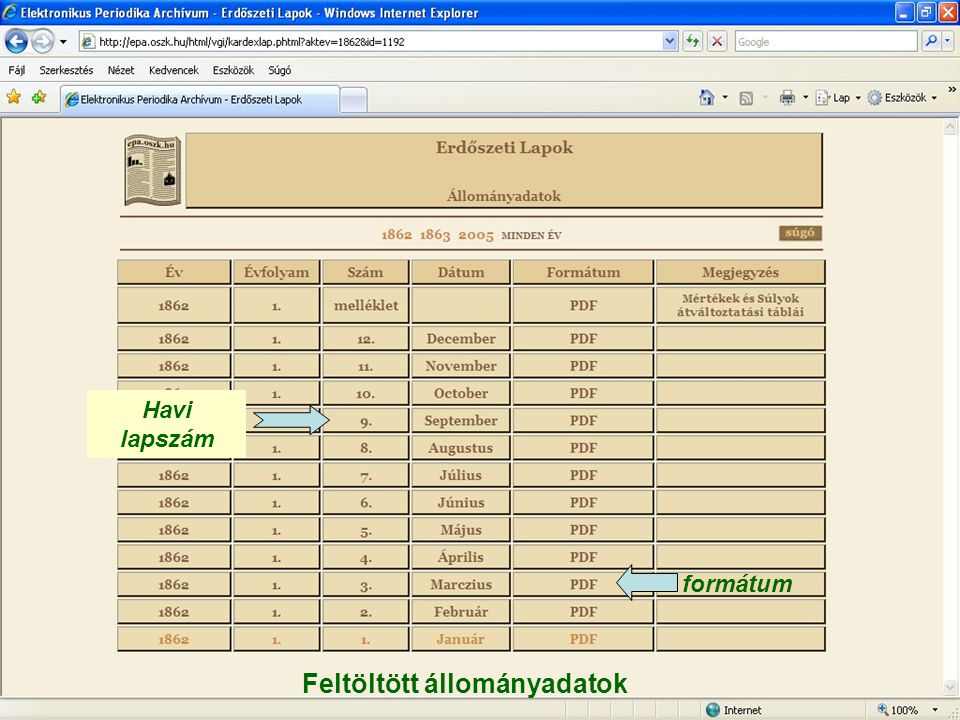 Feltöltött állományadatok formátum Havi lapszám