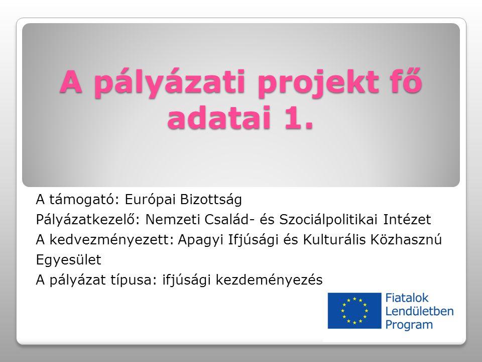 A pályázati projekt fő adatai 1. A támogató: Európai Bizottság Pályázatkezelő: Nemzeti Család- és Szociálpolitikai Intézet A kedvezményezett: Apagyi I