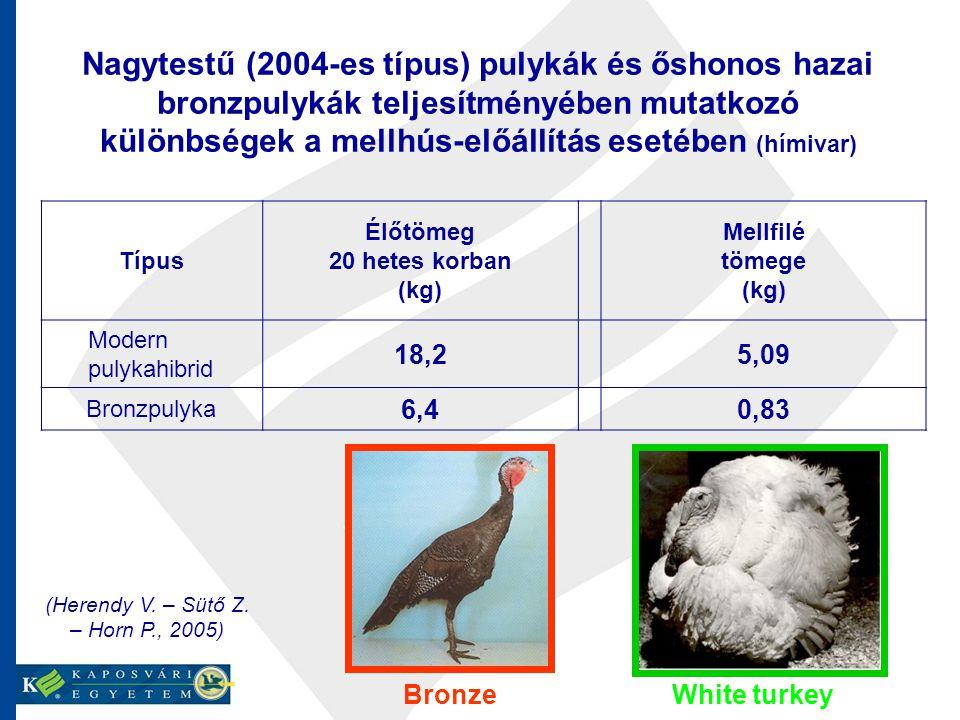 Nagytestű (2004-es típus) pulykák és őshonos hazai bronzpulykák teljesítményében mutatkozó különbségek a mellhús-előállítás esetében (hímivar) Típus Élőtömeg 20 hetes korban (kg) Mellfilé tömege (kg) Modern pulykahibrid 18,25,09 Bronzpulyka 6,40,83 (Herendy V.