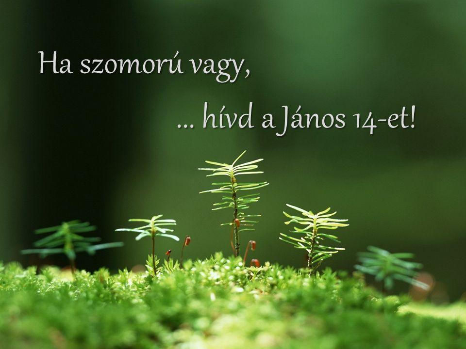 Ha valaki cserben hagy,... hívd a Zsoltárok 27-et!... hívd a Zsoltárok 27-et!