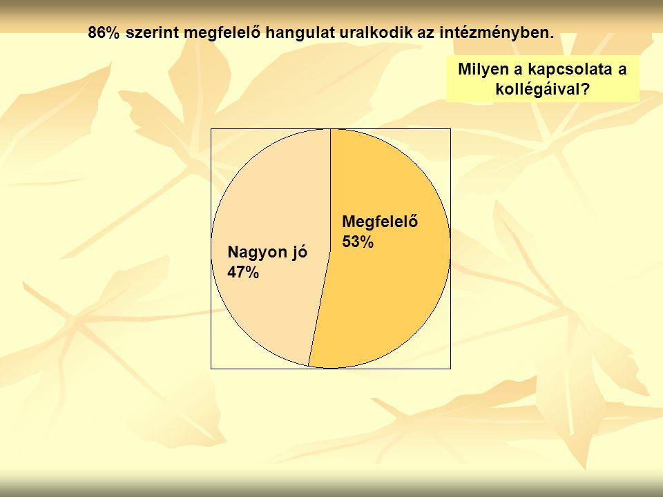 86% szerint megfelelő hangulat uralkodik az intézményben. Milyen a kapcsolata a kollégáival? Nagyon jó 47% Megfelelő 53%