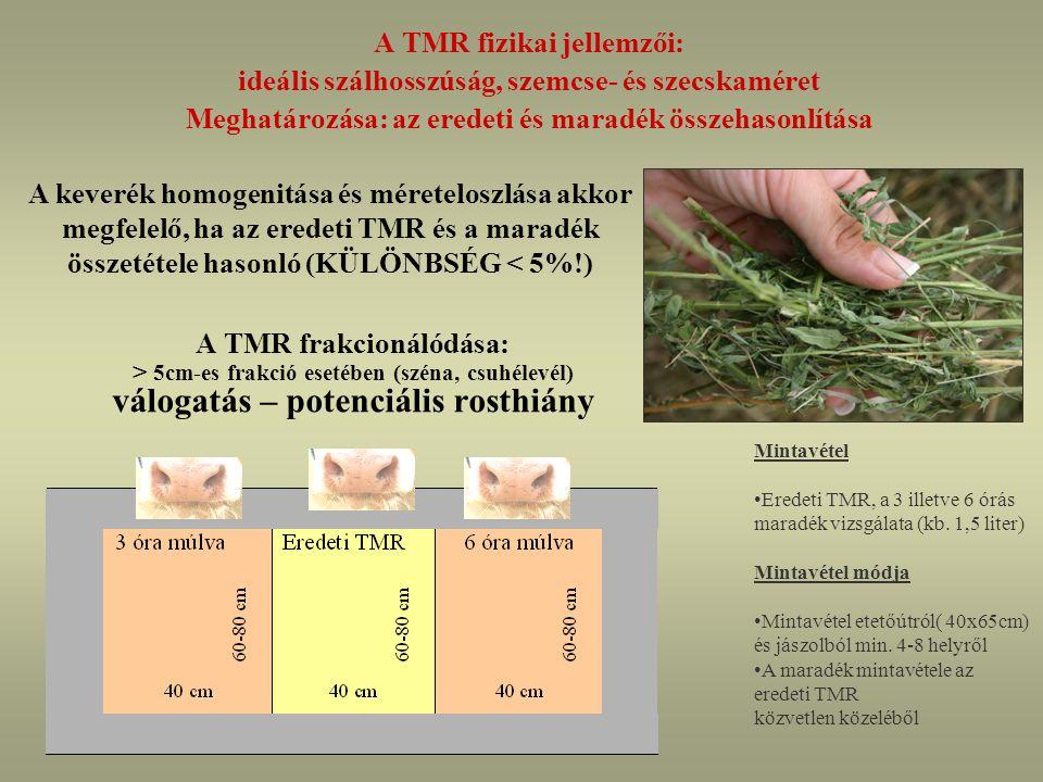 A TMR frakcionálódása: > 5cm-es frakció esetében (széna, csuhélevél) válogatás – potenciális rosthiány A TMR fizikai jellemzői: ideális szálhosszúság, szemcse- és szecskaméret Meghatározása: az eredeti és maradék összehasonlítása A keverék homogenitása és méreteloszlása akkor megfelelő, ha az eredeti TMR és a maradék összetétele hasonló (KÜLÖNBSÉG < 5%!) Mintavétel Eredeti TMR, a 3 illetve 6 órás maradék vizsgálata (kb.