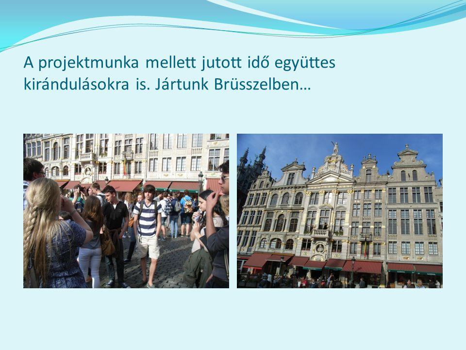 A projektmunka mellett jutott idő együttes kirándulásokra is. Jártunk Brüsszelben…