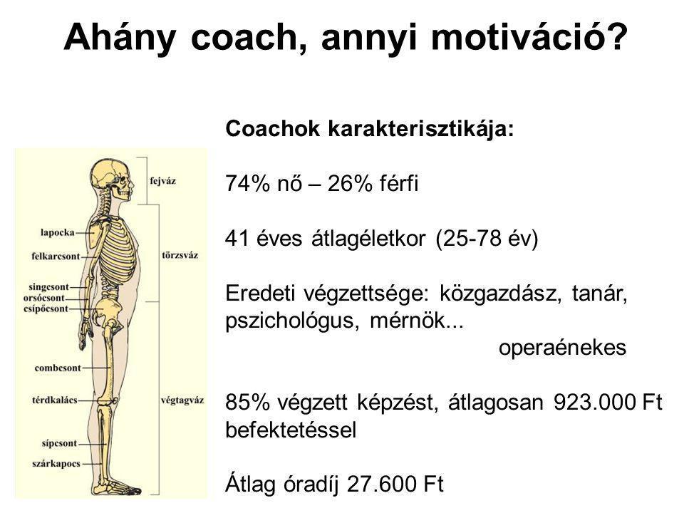 Ahány coach, annyi motiváció.