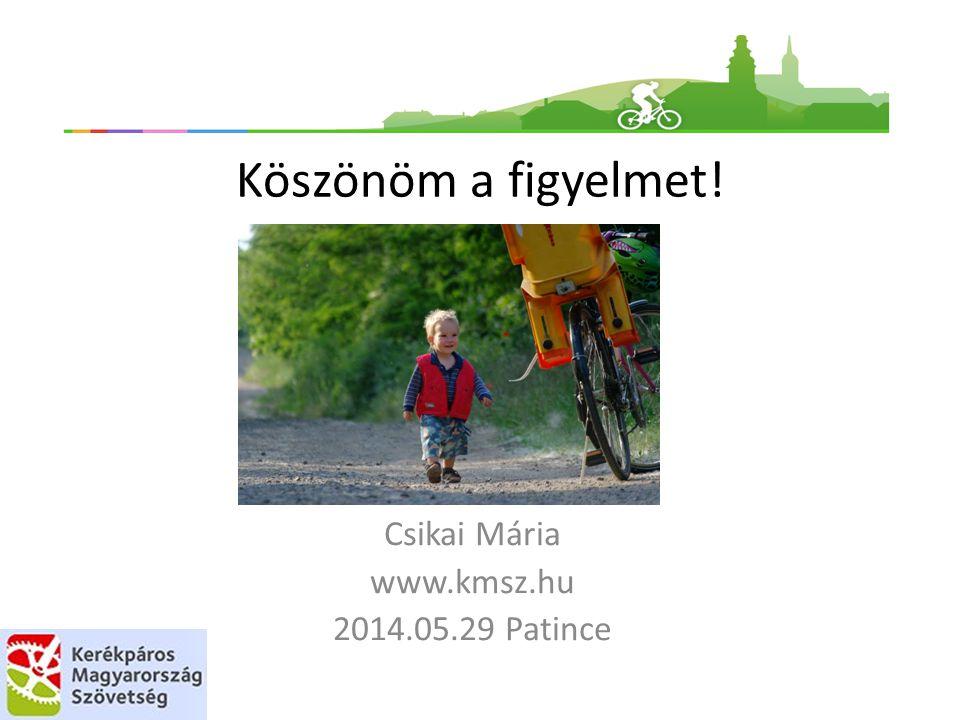 Köszönöm a figyelmet! Csikai Mária www.kmsz.hu 2014.05.29 Patince
