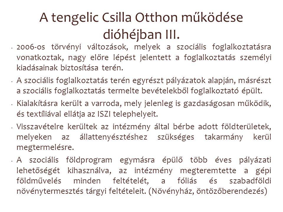 A tengelic Csilla Otthon működése dióhéjban III. 2006-os törvényi változások, melyek a szociális foglalkoztatásra vonatkoztak, nagy előre lépést jelen