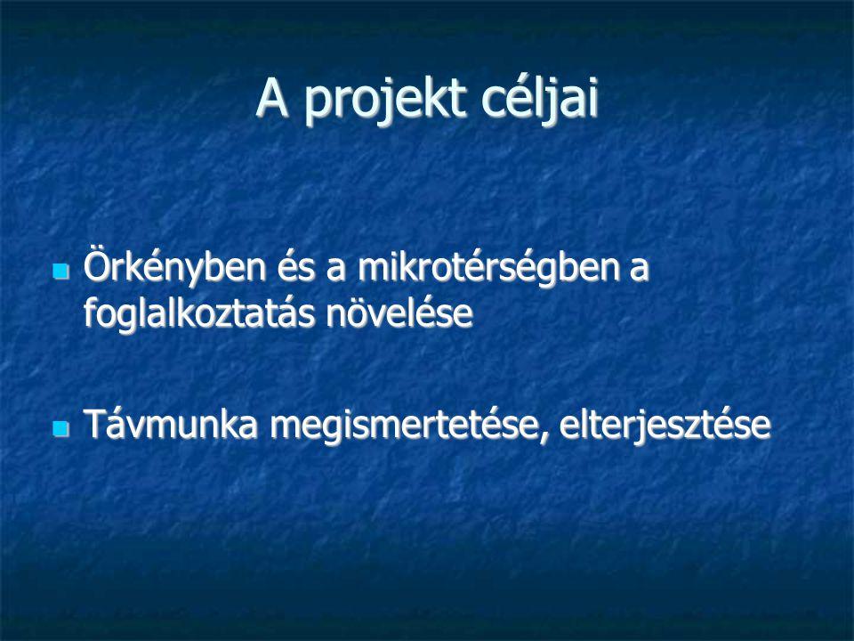 A projekt céljai Örkényben és a mikrotérségben a foglalkoztatás növelése Örkényben és a mikrotérségben a foglalkoztatás növelése Távmunka megismertetése, elterjesztése Távmunka megismertetése, elterjesztése