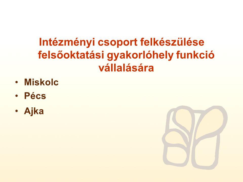 Intézményi csoport felkészülése felsőoktatási gyakorlóhely funkció vállalására Miskolc Pécs Ajka