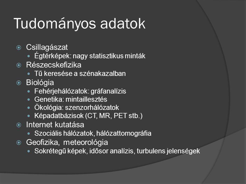 Tudományos adatok  Csillagászat Égtérképek: nagy statisztikus minták  Részecskefizika Tű keresése a szénakazalban  Biológia Fehérjehálózatok: gráfanalízis Genetika: mintaillesztés Ökológia: szenzorhálózatok Képadatbázisok (CT, MR, PET stb.)  Internet kutatása Szociális hálózatok, hálózattomográfia  Geofizika, meteorológia Sokrétegű képek, idősor analízis, turbulens jelenségek