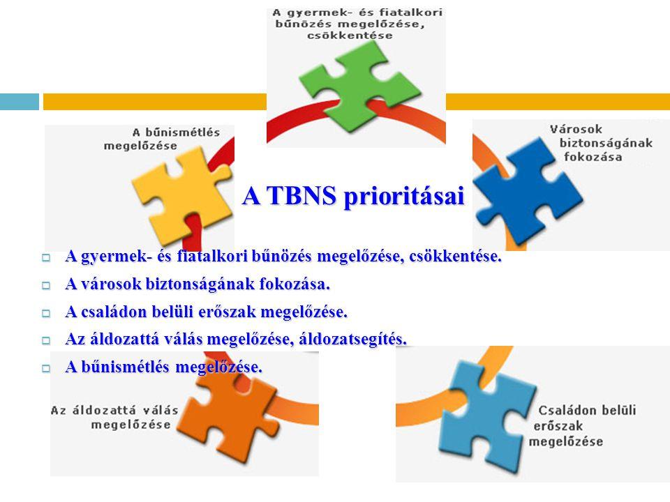 A TBNS prioritásai A TBNS prioritásai  A gyermek- és fiatalkori bűnözés megelőzése, csökkentése.  A városok biztonságának fokozása.  A családon bel