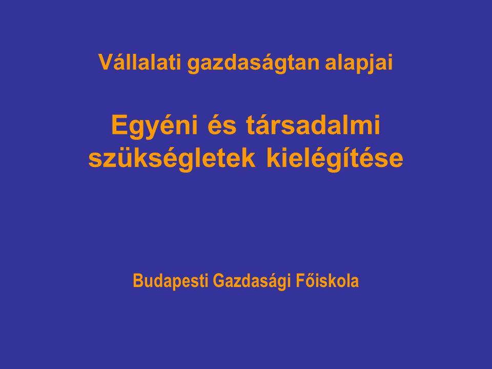 Vállalati gazdaságtan alapjai Egyéni és társadalmi szükségletek kielégítése Budapesti Gazdasági Főiskola