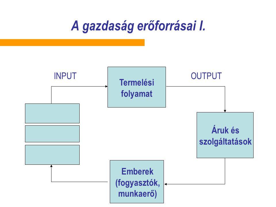 A gazdaság erőforrásai I. Emberek (fogyasztók, munkaerő) Termelési folyamat Áruk és szolgáltatások INPUTOUTPUT