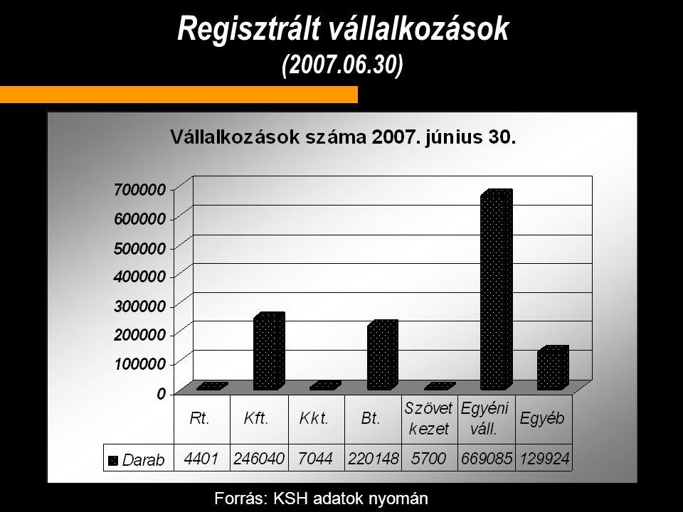 Regisztrált vállalkozások (2007.06.30) Forrás: KSH adatok nyomán