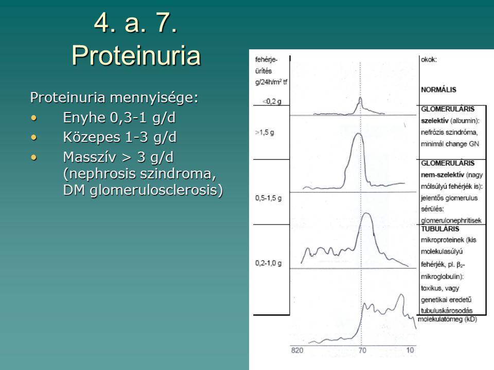 4. a. 7. Proteinuria Proteinuria mennyisége: Enyhe 0,3-1 g/dEnyhe 0,3-1 g/d Közepes 1-3 g/dKözepes 1-3 g/d Masszív > 3 g/d (nephrosis szindroma, DM gl