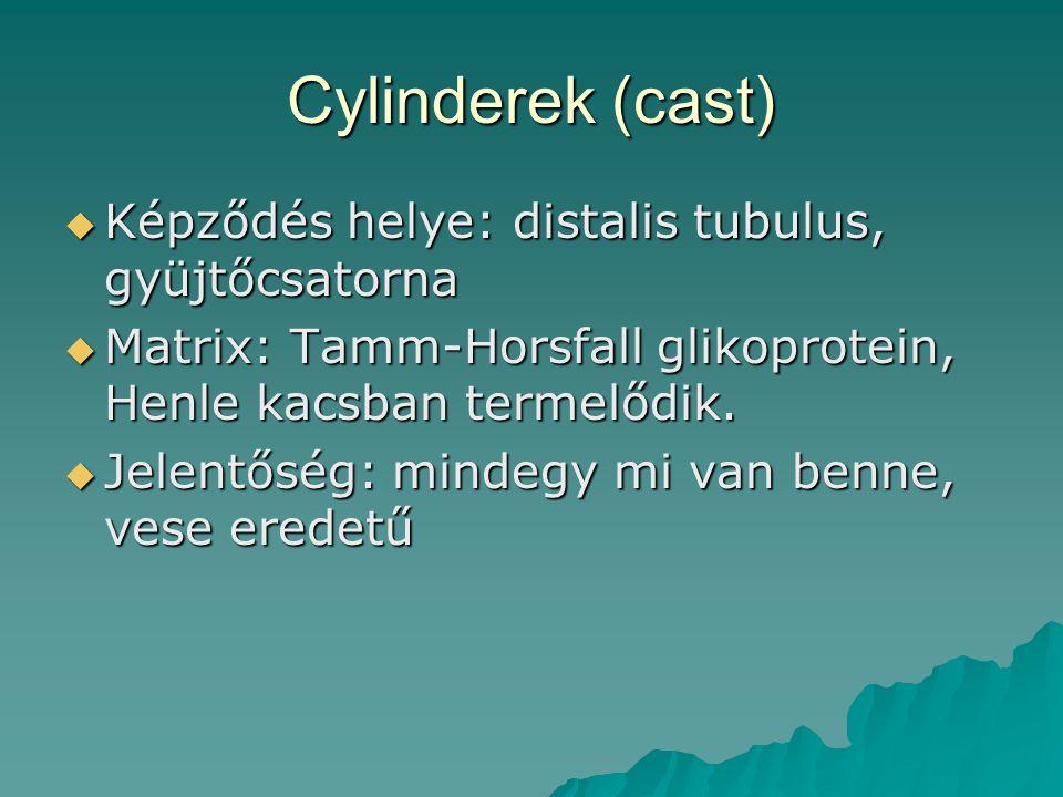 Cylinderek (cast)  Képződés helye: distalis tubulus, gyüjtőcsatorna  Matrix: Tamm-Horsfall glikoprotein, Henle kacsban termelődik.  Jelentőség: min