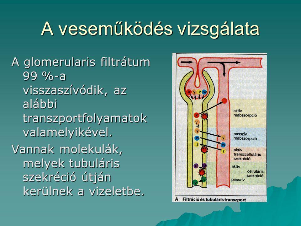 A veseműködés vizsgálata A glomerularis filtrátum 99 %-a visszaszívódik, az alábbi transzportfolyamatok valamelyikével. Vannak molekulák, melyek tubul