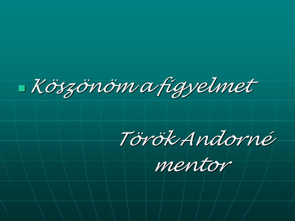 Köszönöm a figyelmet Köszönöm a figyelmet Török Andorné Török Andorné mentor mentor