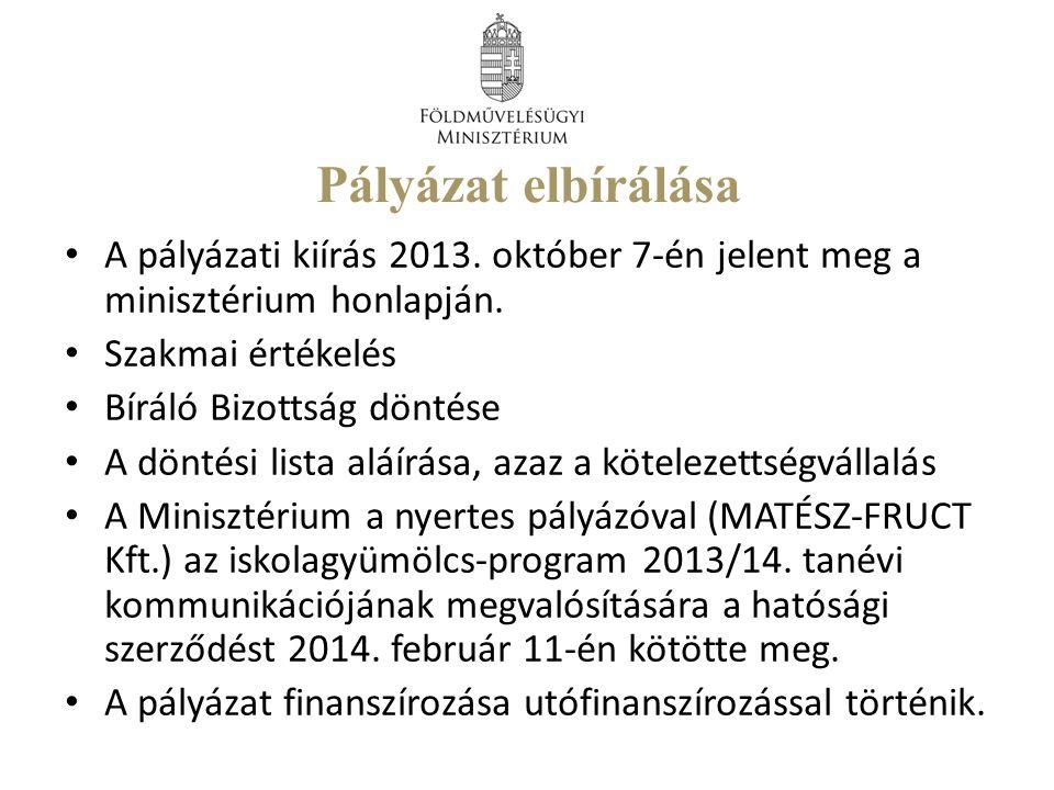 Pályázat elbírálása A pályázati kiírás 2013. október 7-én jelent meg a minisztérium honlapján.