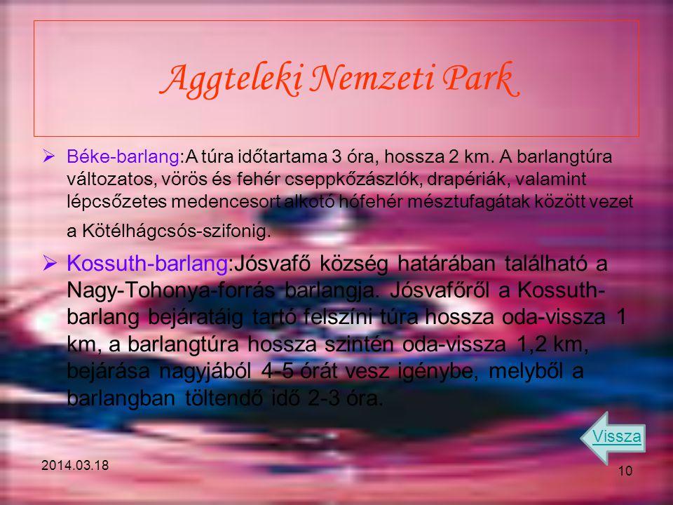 2014.03.18 Aggteleki Nemzeti Park  Béke-barlang:A túra időtartama 3 óra, hossza 2 km. A barlangtúra változatos, vörös és fehér cseppkőzászlók, drapér