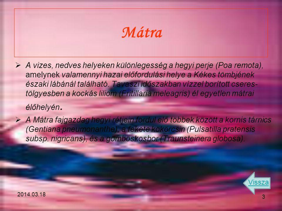 Mátra  A vizes, nedves helyeken különlegesség a hegyi perje (Poa remota), amelynek valamennyi hazai előfordulási helye a Kékes tömbjének északi lábán