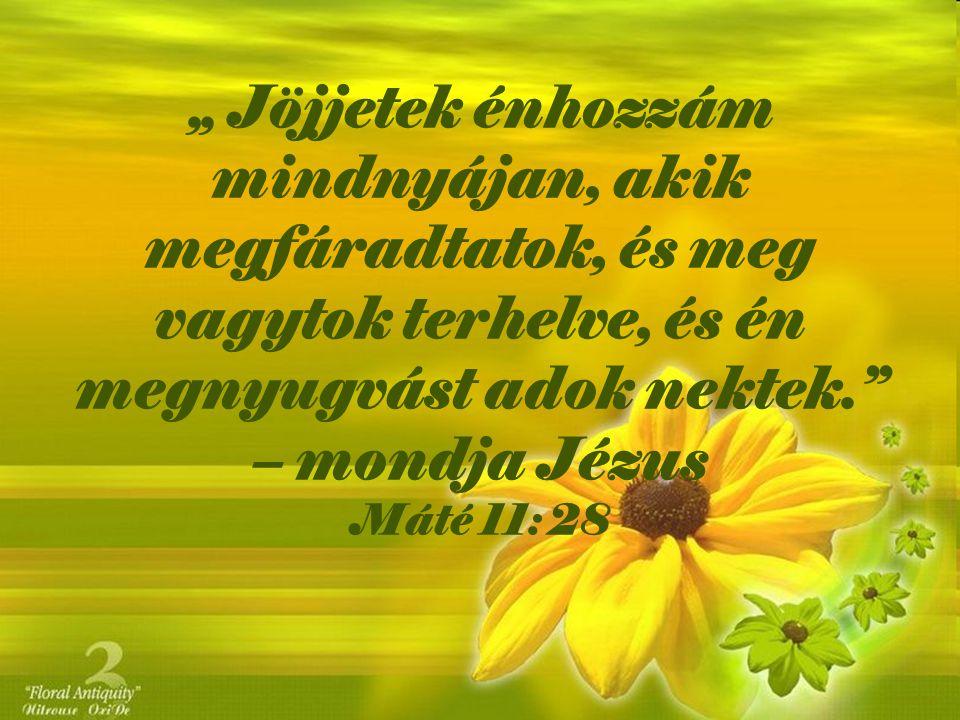 """"""" Jöjjetek énhozzám mindnyájan, akik megfáradtatok, és meg vagytok terhelve, és én megnyugvást adok nektek."""" – mondja Jézus Máté 11: 28"""