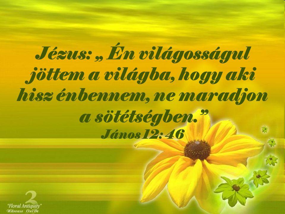 """Jézus: """" Én világosságul jöttem a világba, hogy aki hisz énbennem, ne maradjon a sötétségben."""" János 12: 46"""
